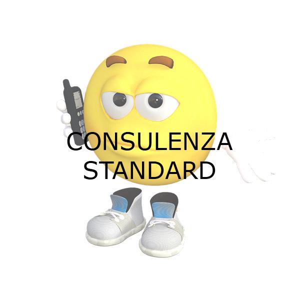 consulenza standard